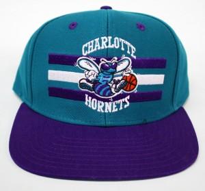 Charlotte Hornets Hat Image