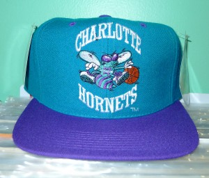 Charlotte Hornets Hat Picture