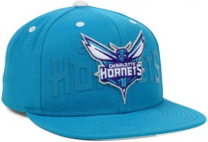 Charlotte Hornets Hats