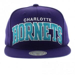 Charlotte Hornets Hats Snapback