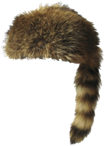 Coon Hat