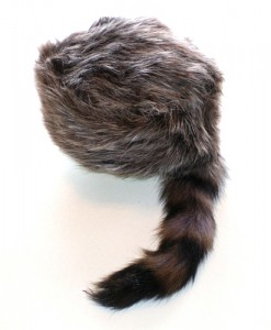 Coon Hat Image