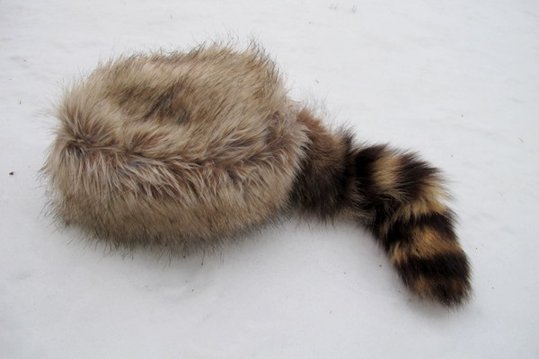 Coon Hats Tag Hats
