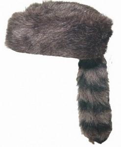 Coon Skin Hat Image