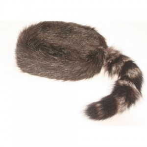 Coon Skin Hats