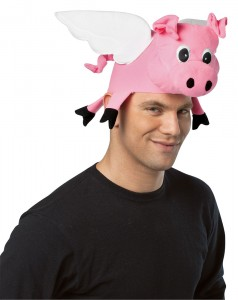 Funny Hat Picture