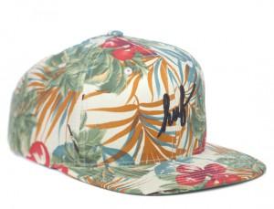 Hawaiian Hat Images