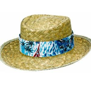 Hawaiian Hat Picture