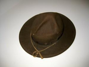 Scout Campaign Hat