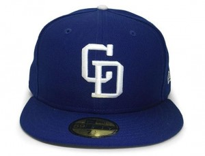 Chunichi Dragons Hat