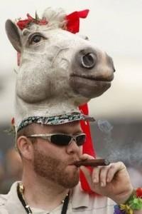 Funny Horse Hats