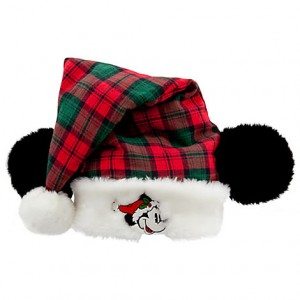 Mickey Santa Hat Pictures