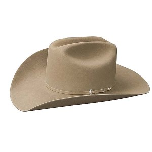 Stetson Cowboy Hats for Men