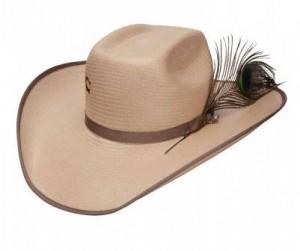 Western Hat Styles