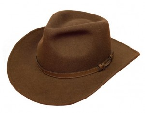 Brown Fedora Hats for Men