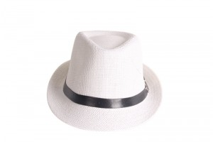 White Panama Hat Mens