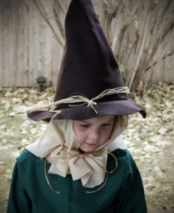 Wizard of Oz Scarecrow Hat